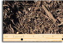Vineyard Mulch